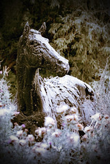 Horse Sculpture (c.richard) Tags: grantchester horse sculpture horsesculpture cambridge rivercam