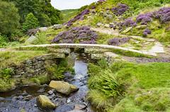 Bronte Bridge, Haworth, West Yorkshire (Kingsley_Allison) Tags: brontebridge clapperbridge stonebridge bronte haworth westyorkshire river beck packhorsebridge bridges uk england charlotte anne janeeyre emily topwithens wutheringheights bronteway wycoller stansbury nikond7200 nikon