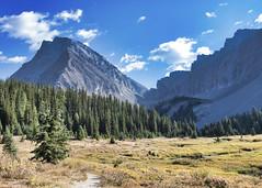 Alberta landscape (Matthew P Sharp) Tags: sigma 1835 sigma1835 alberta canada kananaskis