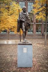 Ghandi Statue (natures-pencil) Tags: mahatmagandhi gandhi statue trees foliage autumn bronze art plinth courtyard university library building architecture setts cobbles voorstraat utrecht nederland netherlands goldenleaves lovelycity