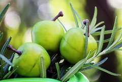 Pomme et Romarin pour un dessert bio-vert (Christian Chene Tahiti) Tags: canon 7d paea tahiti polynésiefrançaise pomme fruit flore jaune vert plat closer closeup bokeh macro macromondays green hmm foundinthekitchen romarin