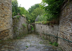 Lannion, Bretagne, France (Ineke Klaassen) Tags: path park lannion bretagne brittany breton france frankrijk green old stone wall perspective sony sonyilce6000 sonyimages sonya6000 sonyalpha6000 sonyalpha outdoor nature sonyphotography photography travelling traveling holiday 1025fav 600views 15faves outside