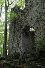 Burgruine - Ruine der Burg - Jagdburg Höfen ( auch Turm zum Stocken oder Friedberg - Baujahr 12. Jahrhundert - Erwähnt 1350 - Aufgegeben 1642 - Höhenburg castello rovina castle ruin château ) in Höfen bei T.hun im Berner Oberland im Kanton Bern der Schwei (chrchr_75) Tags: christoph hurni schweiz suisse switzerland svizzera suissa swiss chrchr chrchr75 chrigu chriguhurni chriguhurnibluemailch september2017 september 2017 albumzzz201709september burg burgruine castillo ruine ruin ruïne руины rovina ruina mittelalter geschichte history wehrbau burganlage festung albumschweizerschlösserburgenundruinen albumburgruinenkantonbern kantonbern bärn sveitsi sviss スイス zwitserland sveits szwajcaria suíça suiza albumregionthunhochformat thunhochformat hochformat susisa kanton bern