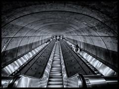 Washington Metro escalator (michaelhertel) Tags: washington rolltreppe escalator sw bw monochrome urlaub travel reise usa metro skancheli
