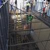 Birmingham Central Lock-up (metrogogo) Tags: cells prison lockup birmingham wmp centrallockup steelhouselane holdingcells inmates