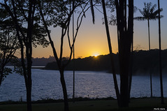 Beautiful morning on Secret Garden of Guarapiranga from SP Brazil (Murilo Filhol Vieira) Tags: amanhecer laranja nascerdosol sol brasil sp secretgarden solosagrado azul