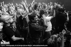 2017 Bosuil-Het publiek bij Back To Back en The Lachy Doley Group 10-ZW