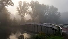Play Misty for me (Peter ( phonepics only) Eijkman) Tags: zaandam zaanstad zaan zaanstreekwaterland nederland netherlands nederlandse noordholland holland
