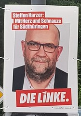 """""""With heart and trap for Southern Thuringia"""". - And without any shaver??? (:Linda:) Tags: germany thuringia town dielinke steffenharzer election2017 beard ad wahlplakat hildburghausen"""