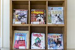 255/365  Pet magazines