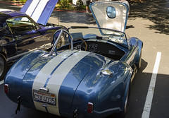 427 Shelby Cobra (rschnaible) Tags: shelby cobra mustang classic car vehicle old historic history transportation