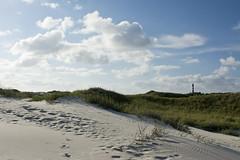 Dünenspaziergang auf Amrum (explored) (kalakeli) Tags: dunes dünen amrumdünen amrum august 2017 island insel nordsee sand beach amrumleuchtturm leuchtturm lighthouse