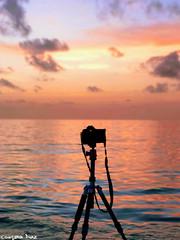 Photography (gusdiaz) Tags: iphone7 iphoneography iphone trip irma southbeach florida miami storm bokeh depthoffield colorful colorido huracan playa sal arena ocean oceano amanecer sunrise