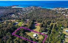 8 Wonnawong Place, Bawley Point NSW