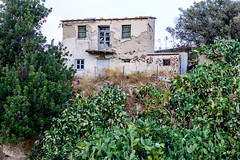 Abandoned (George Plakides) Tags: pricklypears hill traditional house cyprus agiostheodoros ayiostheodoros brick mudbrisks adobe buildingmaterials