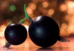 BerryConnection (Uniquva) Tags: macromondays connection gooseberries macro bokeh