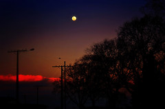 Moonlighting (Kevin_Jeffries) Tags: moon fullmoon lunar landscape silhouette evening newzealand nikon nikkor 50mm light cloud trees