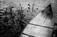 "Muskoka Canoe (""Jimmer"" ( http://jim-vance.pixels.com )) Tags: bw blackandwhite muskoka canoe"