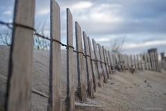 Sandbreak....HFF!!! (Joe Hengel) Tags: sandbreak sand beach seascape seashore fence fenceline fencefriday fencepost seafence bluesky dunes dune dunegrass sanddunes delaware lewesde lewes lsd lowerslowerdelaware capehenlopenstatepark statepark statebeach