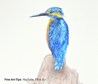 How to Draw a King Fisher With Aquarelle Pencils