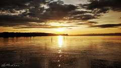 Golden Sunset. (j૯αท ʍ૮ℓαท૯) Tags: constance konstanz germany sun sunrise lakescape lakeview lake lac colors golden nature beautyinnature calm reflection reflects reflejos