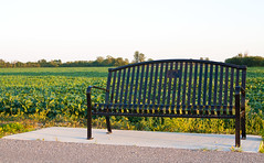 Sitting by a Field! (J.R. Rondeau) Tags: rondeau windsor ontario essexcounty canoneos tamron2875 photoshopelements10 greenfields chairs benches