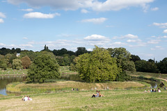 Island in the pond | Hampstead Heath | August 2017-1 (Paul Dykes) Tags: hampstead london england unitedkingdom gb hampsteadheath park heath parkland uk urbannature