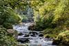 East Lyn River (stuleeds) Tags: eastlynriver falls nationaltrust river watersmeet