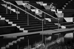 A place to read (Maureen Pierre) Tags: read steps rails city avonriver river christchurch npsnz mono blackandwhite