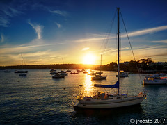 Sunset @ Watsons Bay (orgazmo) Tags: australia sydney sydneyharbour nsw newsouthwales watsonsbay bay boats outdoors sun sunsets sundown downunder olympus omd em1mk2 mzuiko12100mmf4ispro micro43s m43s mft landscapes