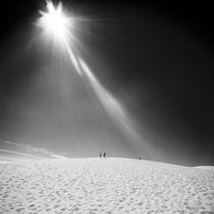 (kuestenkind) Tags: dänemark denmark nordsee dunes rubjergknude blackandwhite