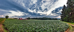 IMG_0319-22PRtzl1scTBbLGER2 (ultravivid imaging) Tags: ultravividimaging ultra vivid imaging ultravivid colorful canon canon5dmk2 clouds scenic vista fields farm evening summer panoramic pennsylvania pa rural rainyday landscape sky path painterly partlycloudy barn twilight
