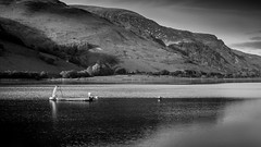 Llyn Mwyngil, ( Tal-y-llyn Lake ) Gwynedd. (Alan Hughes Mach) Tags: wales cymru uk gwynedd eryri snowdonia talyllyn snowdonianationalpark lake llyn water fishing boat mountain mountainside caderidris cadairidris landscape scenery landschaft paysage bnw blackandwhite mono monochrome hill hills walk walking hike hiking bw black white blancoynegro noiretblanc blackwhite shadow dof depthoffield paisaje canon eos 40d light rural countryside tree trees wood woodland ridge ridgeline skyline sunlight sunshine november autumn fall outdoor outside welsh cymraeg naturaleza reflection