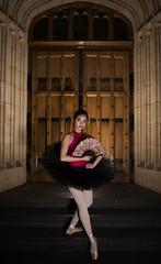 Aldia (Haddadios) Tags: ballet dancer dance photography jump move pose nikon d800 afs nikkor 2470mm f28g ed tokina 1116mm f28 ultrawide angle lens strobes flashes speedlights neewer flash units adelaide university art gallery south australia bonython hall professional ballerina