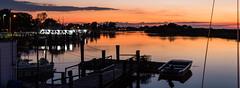 Higbee's Marina (Blkfive0) Tags: golden birds gulls sea dock marina tree line fishing