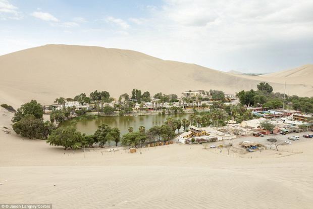 Không ai ngờ rằng, giữa sa mạc cằn cỗi bậc nhất thế giới lại có một thị trấn xanh tươi đến vậy - Ảnh 5.