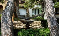Troncos caprichosos (candi...) Tags: fuente troncos arboles jardín airelibre figura agua sonya77 elrocdesantgaieta fachada ventana casa