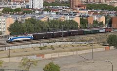 Fresa con bigotes (Mariano Alvaro) Tags: tren fresa renfe coches costas 333 401 madrid aranjuez