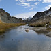 Perspective (Alpine Light & Structure) Tags: switzerland schweiz suisse alps alpen alpes graubünden lagreina