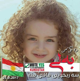 مرحبا بك يا دولة كردستان