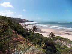 DSCN0468 - Praia de Pipa - Rio Grande do Norte - Brasil (Marcia Rosa ()) Tags: beach nature ocean cost vegetation sea pipa rn marciarosa