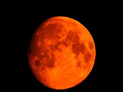 Forest Fire Moon (robinlamb1) Tags: nature outdoor moon lunarshot aldergrove forestfiresmoke bloodmoon