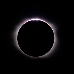 Total Eclipse 2017 (lancekingphoto) Tags: solareclipse totaleclipse solarhalo astronomical 2017solareclipse tennessee