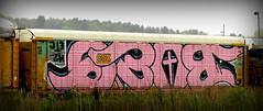 (timetomakethepasta) Tags: bozo h2 etc wholecar freight train graffiti art upside down csx autorack selkirk new york photography