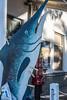 il pesce spada (Clay Bass) Tags: 35mm spotorno clothespins fish fuji natural paint xt1