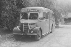 Jennings, Ashen, Essex (ianbus1968_72) Tags: jennings enr262 bedfordob duple