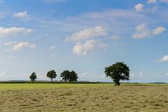 2017-08-24 Hulshorst - Veluwemeerkust Hulshorst-9 (stunningtravelnl) Tags: veluwe veluwemeerkust hulshorst hierden wandelen wandeling wandelroute nunspeet