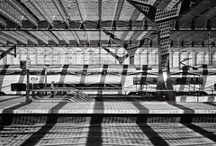 170709_000021 (Jan Jacob Trip) Tags: pancro rotterdam film train transport light shadow platform station centralstation analog pattern leica m6 monochrome bw white black
