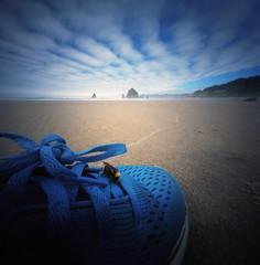 For one bee, the world's most fortuitive shoe (Zeb Andrews) Tags: realitysosubtle6x6 kodakektar100 colorfilm pinhole lensless cannonbeach haystackrock oregoncoast oregon landscape pacificnorthwest beach coast pacificocean shoe blue nikoncoolscan9000 scannedatbluemooncamera