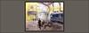 BUDAPEST-ARTE--PINTURA-ESTACION-FERROCARRIL-ESTACIONES-FERROCARRILES-HUNGRIA-TREN-PAISAJES-FERROVIARIOS-IMPRESIONES-CUADROS-PINTOR-ERNEST DESCALS- (Ernest Descals) Tags: budapest hungria hungary pintura pinturas pintures cuadros cuadro quadres paintings painting pintar pintando impresion impresiones tren railway estacion estaciones ferrocarril ferrocarriles ferrocarrils ferroviarios station luz light sintesis fluidez art arte artwork estructuras manchas artistas artista artist artistes interior paisaje paisajes urban urbanos paisatge paisatges landscape landscaping vida life ventanales pasajeros ernestdescals plastica plasticos escena escenas people gente personas serhumano